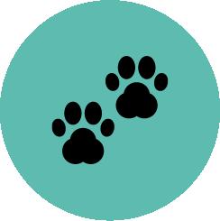 VO.U. pelos Animais icon
